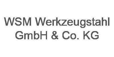 WSM Werkzeugstahl GmbH & Co. KG